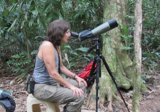 Christina Vojta observing a harpy eagle nest