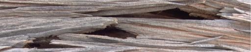 splintered-wood